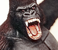 Shawn Nagle Gorilla and Raptors Model Kit